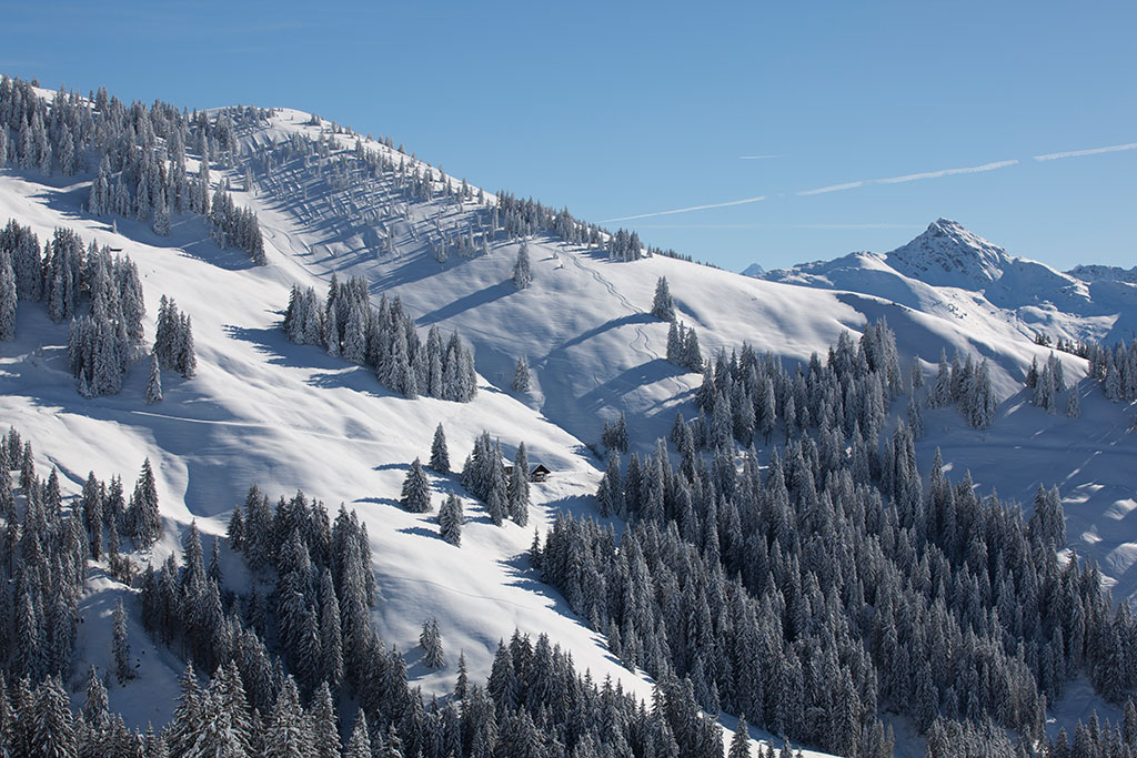Kitzbühler Alpen Wandern